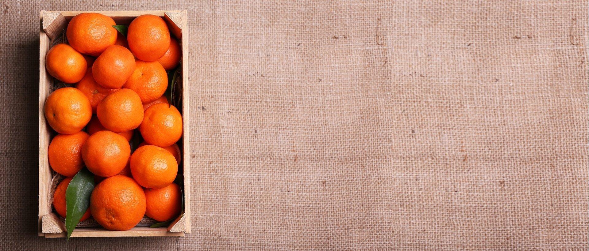slideshow-matafruit-naranjas-03