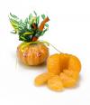 Mandarina de caramelos de naranja