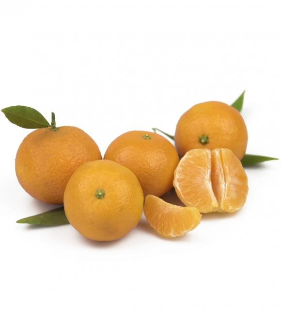 mandarina clemenula
