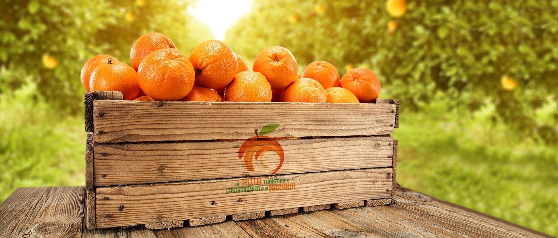 Matafruit Naranjas 02